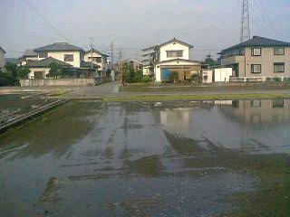 甲府市南部では、田植えの準備のため、水がはられている田んぼが増えています。