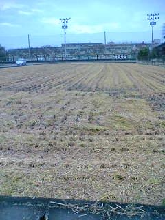 我が家の田んぼの稲刈りが終わりました。