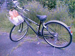 最近、自転車通勤をしています。